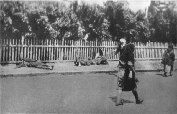Ukrainian starvation 1933