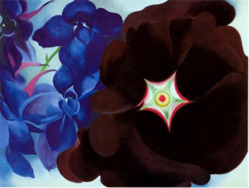 O'Keefe Black-Hollyhock-Blue-Larkspur-1930
