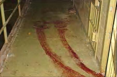 Blood trails at Abu Ghraib
