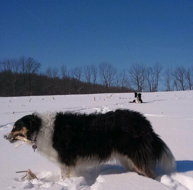 march snow 2015