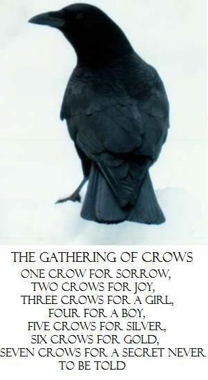 Crow secret